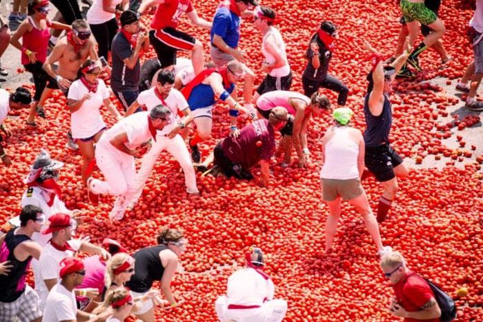Томатина- за что так с помидорами?