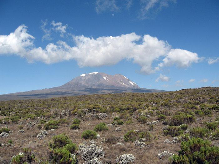 Kilimandscharo von Westen