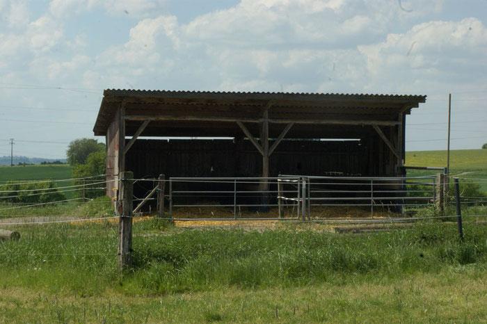 Weidehütte