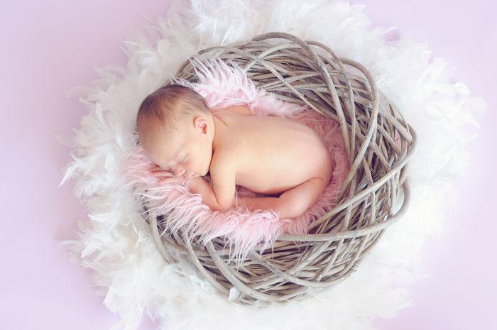 Bild Baby im Nest