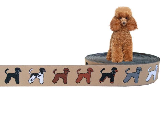 Pudel Webband Hunde Borte Hund