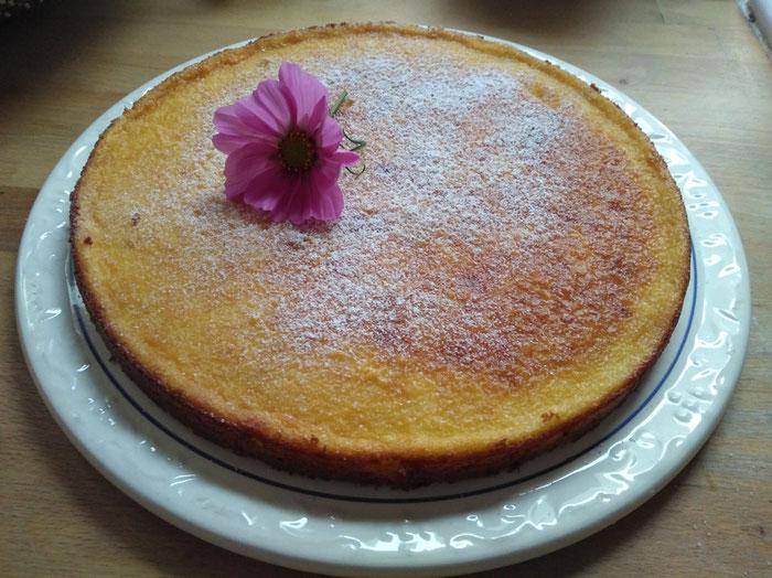 Cheesecake aus selbst gemachtem Schichtkäse