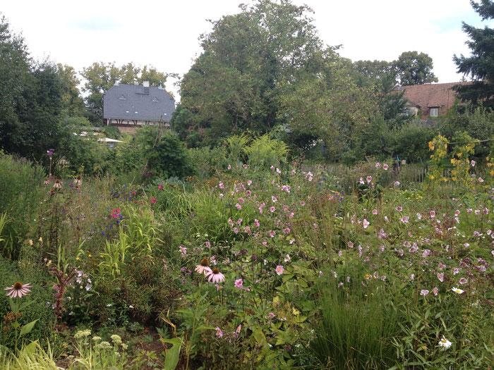 Der Bauerngarten im Hofgut Oberfeld in sommerlicher Pracht.