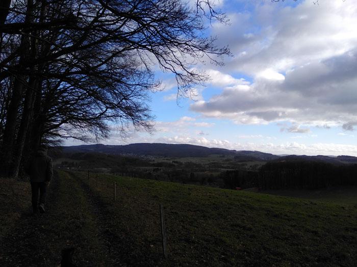Ausblick in Richtung Neukirchner Höhe - sogar mit blauem Himmel.