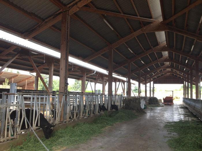 Auf dem Hofgut Oberfeld könne auch die Kuhställe besichtigt werden.