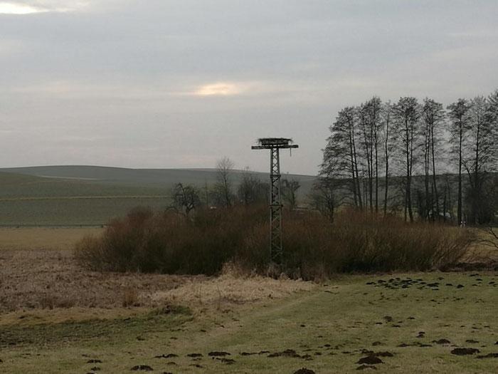 Das Storchennest in Nieder-Klingem am Wanderweg Klinger-Storch