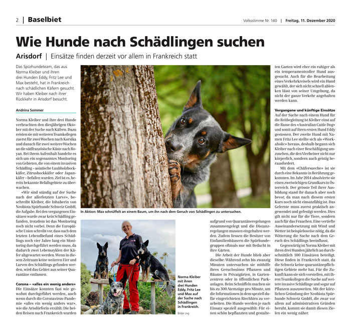 Neobiota Spürhunde, Asiatischer Laubholzbockkäfer, Popillia japonica,