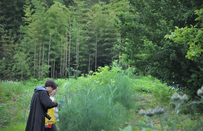広大な里山を舞台に、定植・種まき・ガーデニングを学びます。自然に癒されながら、都会の庭で応用できる基本形をマスターしていただきます。