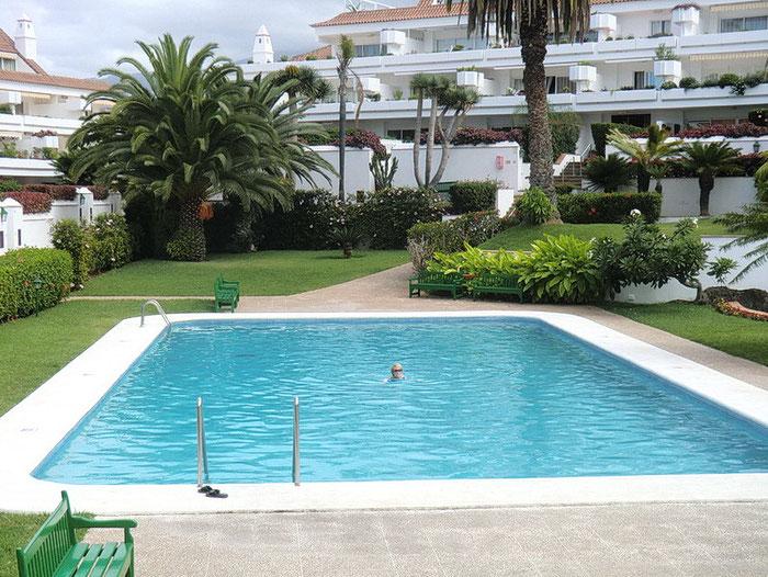 Pool umrahmt von einem subtropischen Garten mit Rasenfläche.