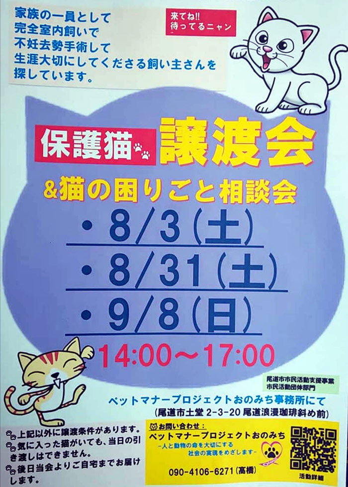 9月8日(日)保護猫譲渡会