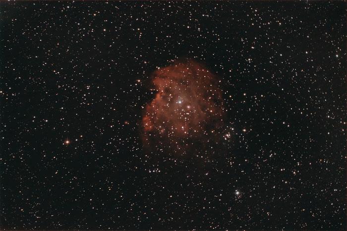 NGC 2174, NGC 2175, Affenkopfnebel, Monkey Head Nebula