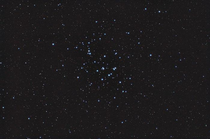M44, Praesepe, Krippe, Beehive-Cluster, Bienenkorb-Haufen