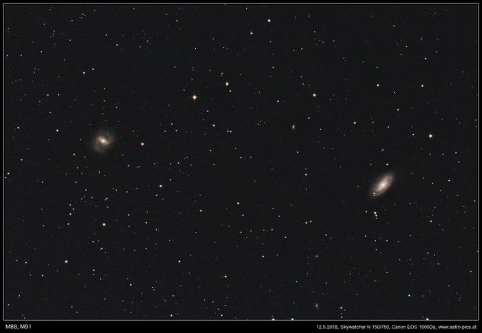 M88, M91 im Haar der Berenike