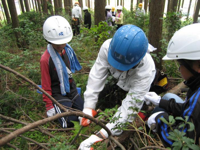 香肌小林業体験