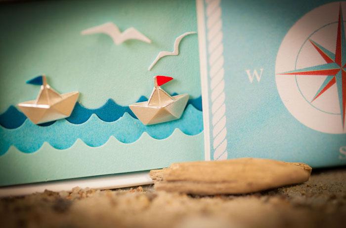 Schiffchenohrstecker im geöffneten Diorama mit Sand im Vordergrunf