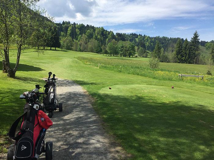 Der Golfplatz Oberstaufen Steibis