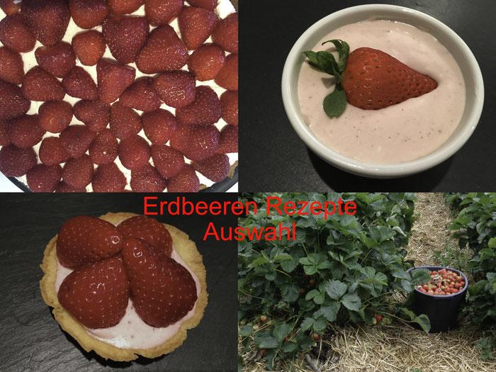 Erdbeeren Rezepte Auswahl