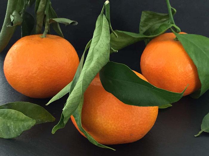 Die Mandarine süss und gesund!