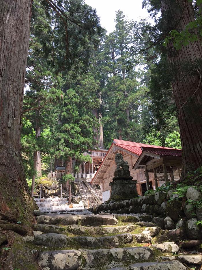 わたしと自然と調和の物語 石徹白 中居神社