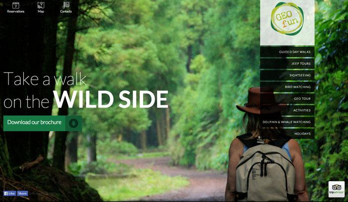 Ejemplo de página web con tonalidades verdes.