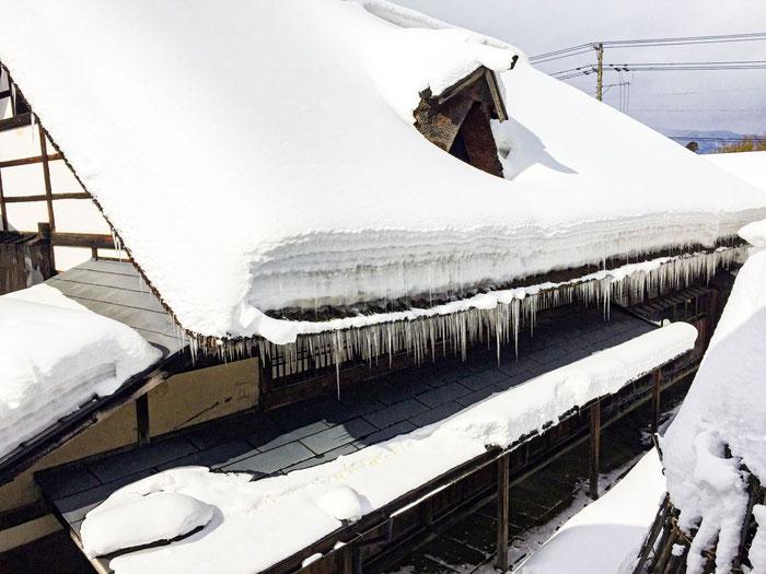 茅葺き屋根の雪下ろしは危険なので、もう少し様子を見ます