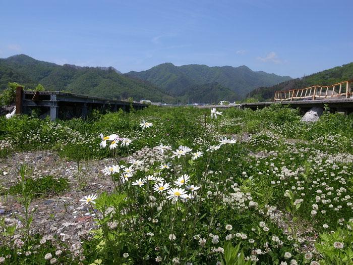 2013年6月 大槌駅 阿部美香子