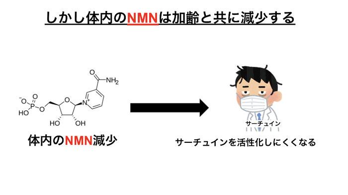 体内のNMN(ニコチンアミドモノヌクレオチド)は加齢で減少。サーチュインが活性化されにくくなる。