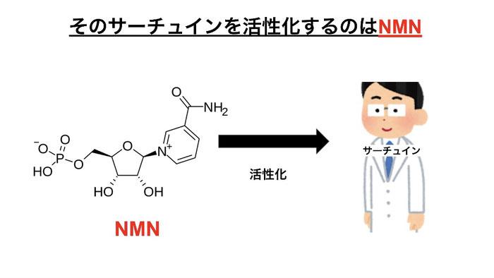 サーチュインを活性化する為にはNMNが必要。NMN(ニコチンアミドモノヌクレオチド)が体内でNADに変化してサーチュインを活性化する。