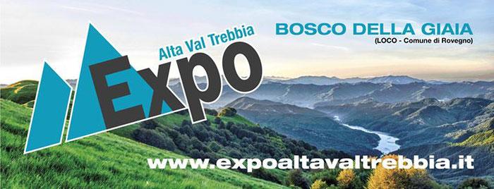 """gli """"Artigiani Creativi"""" di ArTre  a Loco di Rovegno  per EXPO ALTA VAL TREBBIA 28 - 29 - 30 luglio 2017"""