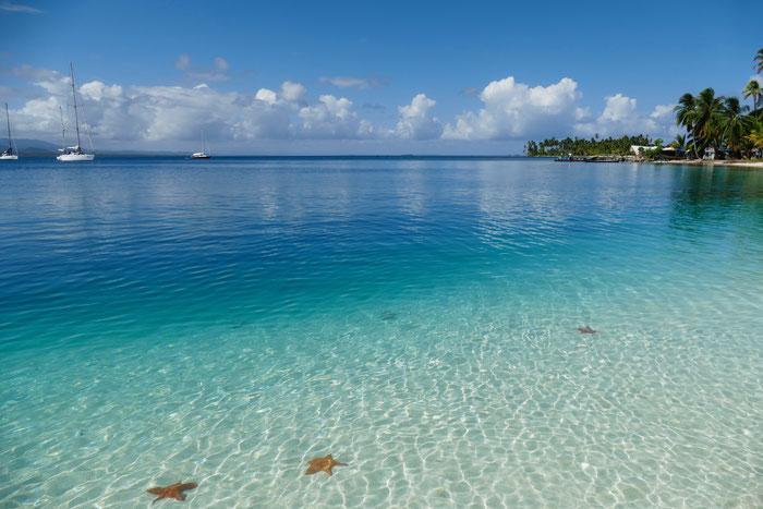 San Blas Seesterne Meer Inseln