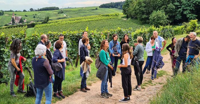 Histoires de terroir en Alsace - visites guidées