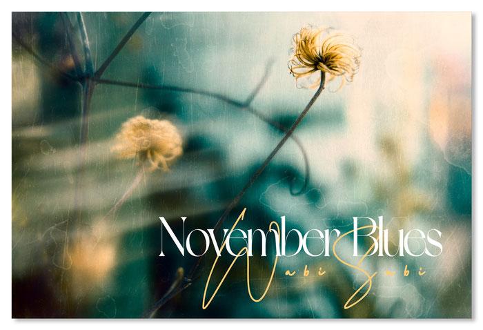 Herbstblumen Michael Finndor Fotografie