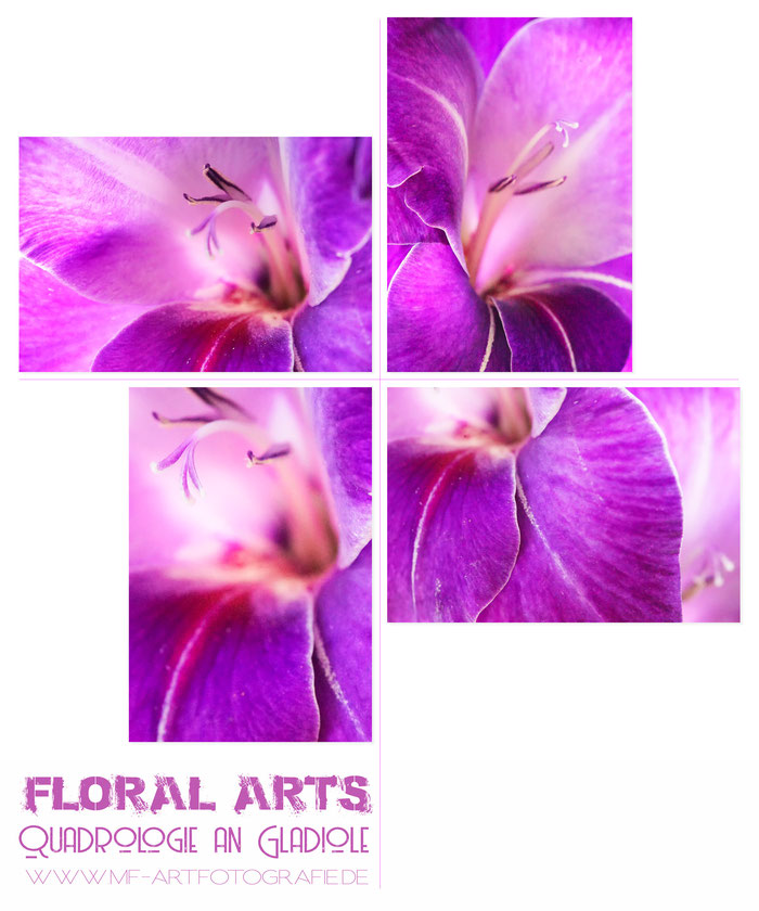 Floral Arts by Michael Finndorf