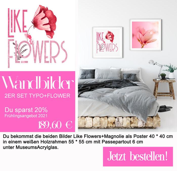 2ER SET Wandbilder - Like Flower + Magnolie