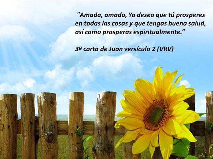Frases De La Biblia Desarrollo Personal Superación Y Autoayuda