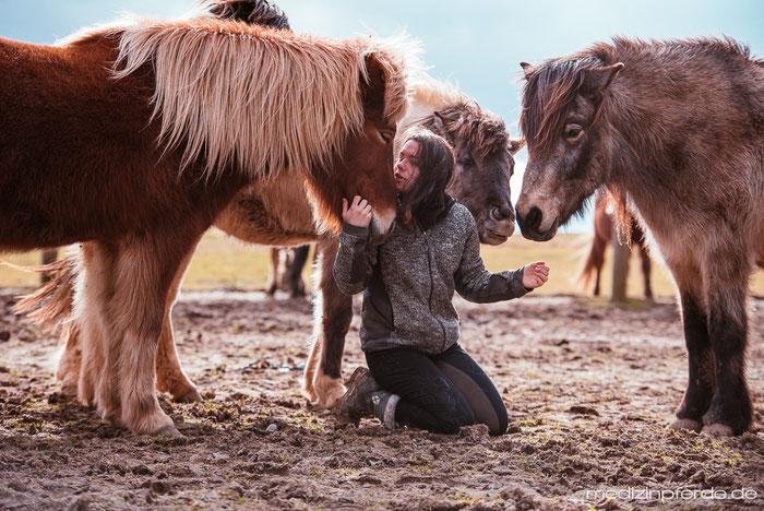Herde, Beziehung, Vertrauen Pferd, EponaQuest, Mensch-Pferd-Beziehung, Pferdeblog