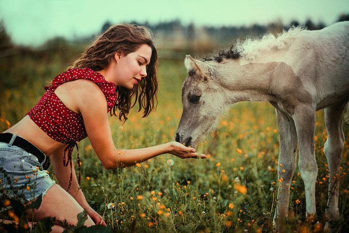 Beziehung zu Pferd, Vertrauen aufbauen, Herzverbindung, Pferdeblog, Pferdeseminar, Fohlen, Linda Kohanov