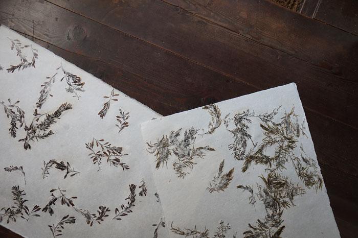 能登仁行和紙 壁紙 海そう入紙 自然素材