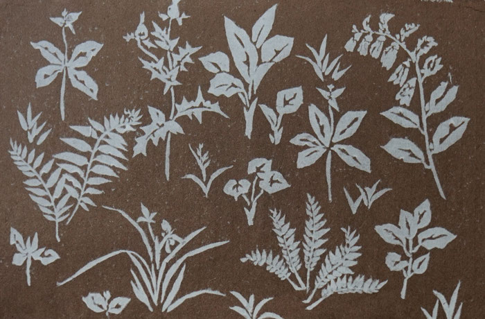 能登仁行和紙 壁紙 杉皮紙 型落とし紙 自然素材