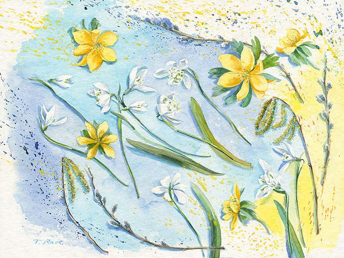 Die ersten Blumen und Knospen aus dem Garten