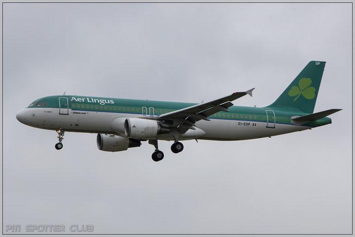 EI-EDP A320-214 3781 Aer Lingus @ Frankfurt Airport 22.10.2014 © Piti Spotter Club Verona