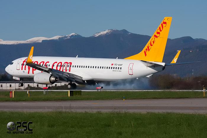 TC-AAY B737-82R 40874/3316 Pegasus Airlines @ Bergamo Airport 25.11.2013 © Piti Spotter Club Verona