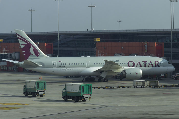 A7-BCG B787-8 38325/116 Qatar Airways @ Delhi Airport 07.2015  © Piti Spotter Club Verona