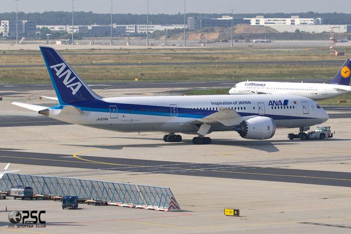 JA828A B787-8 42248/140 ANA - All Nippon Airways @ Frankfurt Airport 25.07.2014 © Piti Spotter Club Verona