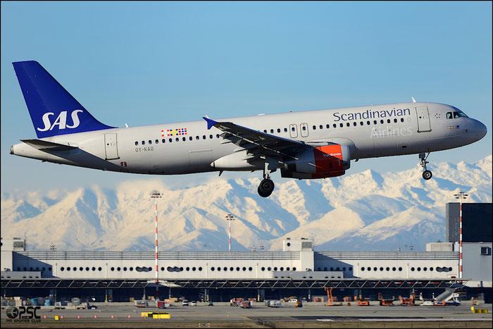 OY-KAO A320-232 2990 SAS Scandinavian Airlines - Scandinavian Airlines System @ Milano Malpensa Airport 25.01.2014 © Piti Spotter Club Verona