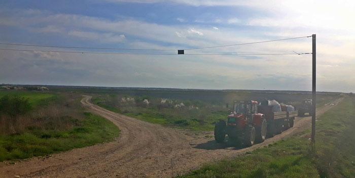 Traktoren warten an einem Bahnübergang in Serbien