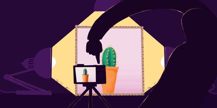 llustration d'une personne prenant une photo d'un cactus dans une boîte à lumière