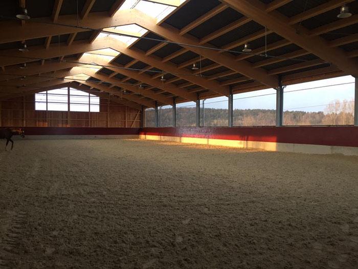 Reithalle 20m x 45m mit einem Quarzsand Teppichbelag