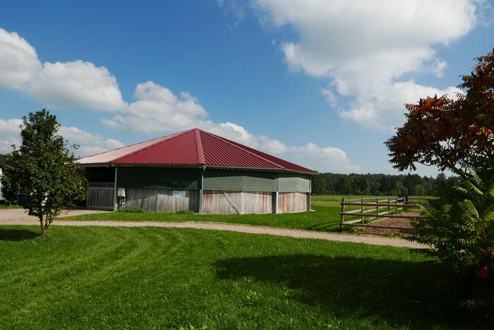 Longierhalle mit integrierter Führanlage.
