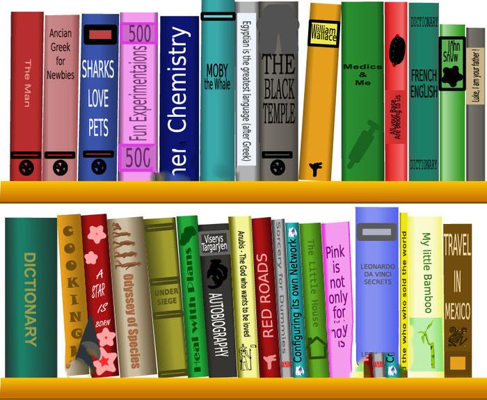 Meine Bücher über mein Leben ohne und mit dem GIST im Exon 11
